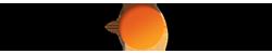 discover-logo@2x